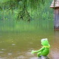 Májusi eső Baranyát ér - esőbarát programok az ország legdélibb megyéjében