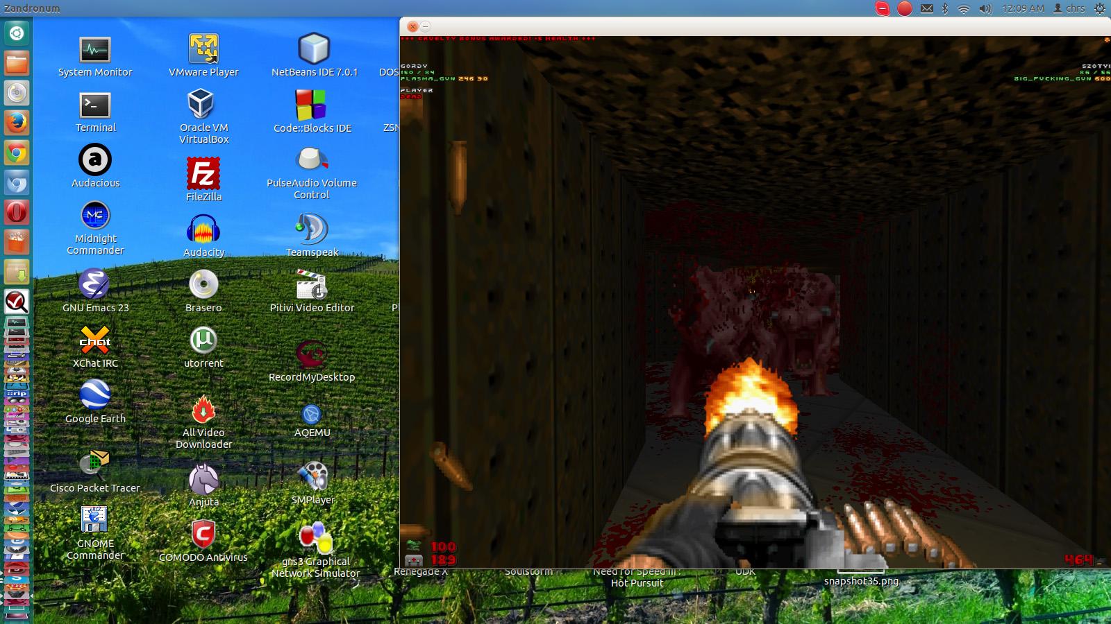 brutal_doom_linux_8.jpg