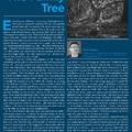 Péter Forgács: The family tree