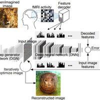 Az emberi elmében olvas a mesterséges intelligencia