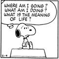 Mi az életcélod?
