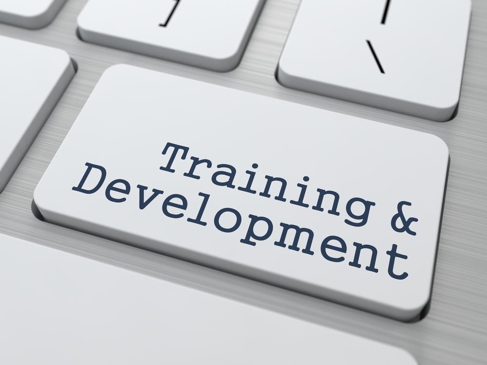 training-and-development.jpg