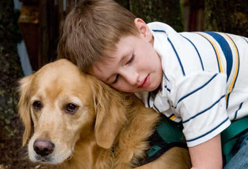 autism-s12-photo-of-autistic-child-with-dog.jpg