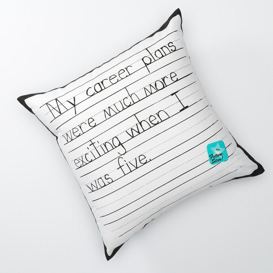 career_pillow.jpeg