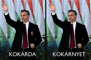 Magyar seggbe magyar lóf@szt!
