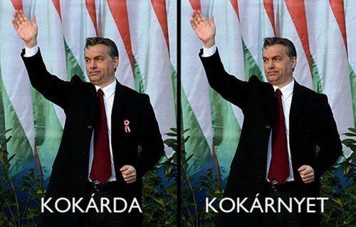 kokarda-faviccek_hu.jpg