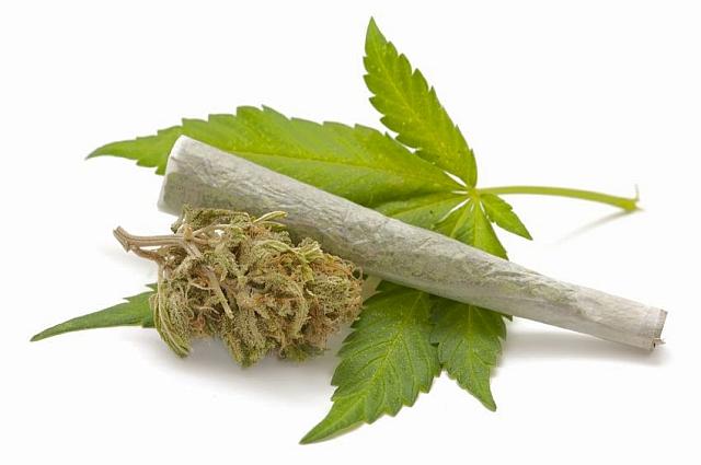 marihuanalevel1-privatbankar_hu.jpg