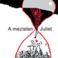 Nick Hornby: A meztelen Juliet