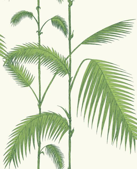 hephaistos_cole_son_contemporaryrestyled_palm_1009.jpg