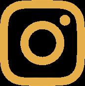 instagram_fontawesome.png