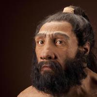 Csak 6000 éve fehéredtünk ki