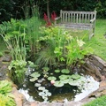 Minden kertben lehet tó - csak ne így!