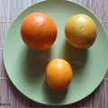 Meyer-citrom