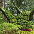 Élő szobrok a botanikus kertben