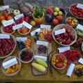 Különleges zöldségek hétvégéje