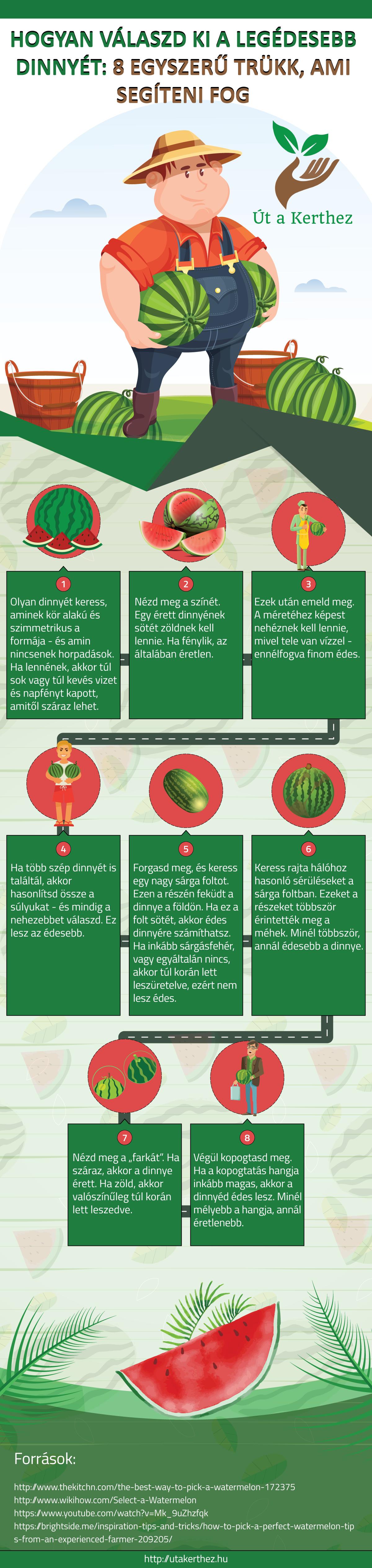 infografika-dinnye.png