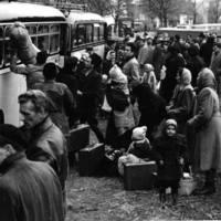 Van-e nagyobb gazemberség annál, mint amikor Félázsiából Európába bevándorolt magyarok kiabálnak kígyót-békát a menekültekre az 1956-os menekültáradat után?