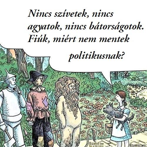 miert_nem_mentek_politikusnak.jpg