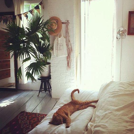 bohemian_white_bedroom_house_plant_natural_fiber.jpg
