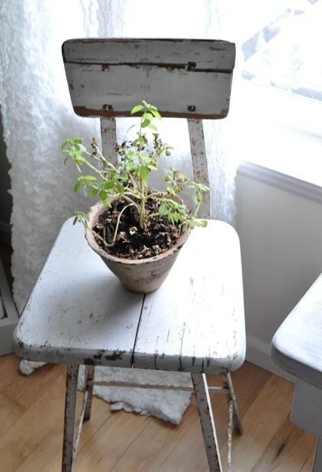 stool_plant_stand_thumb_4.jpg