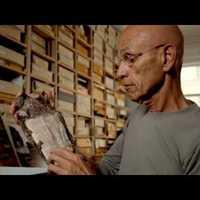 A WTC bibliacsodája, amit egy tűzoltó acélba égve talált