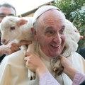 Pápák és terepi harcosok - ki mennyire legyen