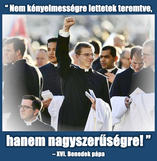 kispap_hosok.png