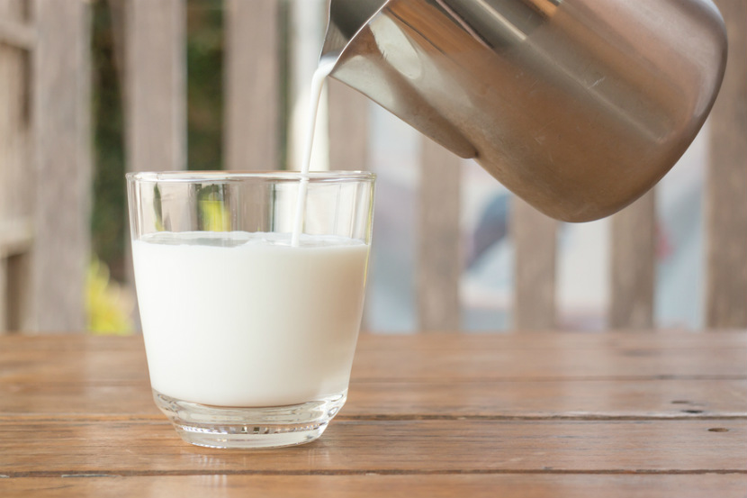 all-about-cow-s-milk-v-2-resized.jpg