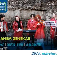 A HANEM zenekar koncertje a KékSzobaHallban