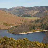 Wicklow-hegység, a megunhatatlan: Lough Dan környéke