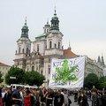 3 növény és 20 füves cigi mindenkinek jár (a cseheknél)