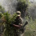 Nyílt levél: Érjen véget a drogháború!