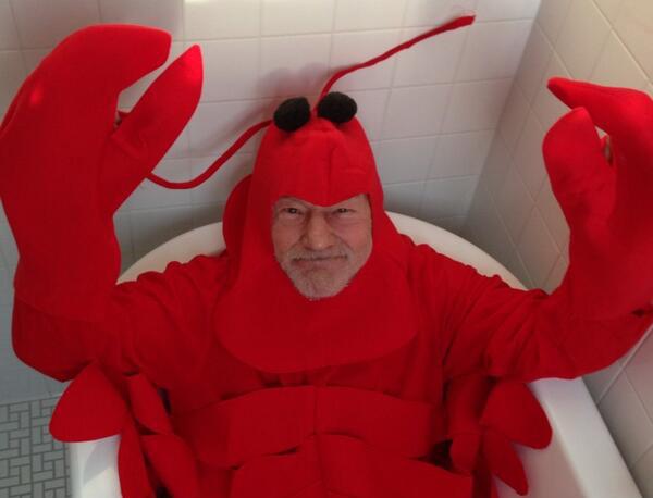 sirpatrick_lobster.jpg
