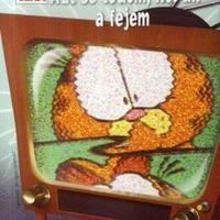 Zseb-Garfield 125