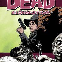 Walking Dead 12: Idegenek között
