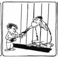 Hoviv-képsorok a Tintinben, 1965