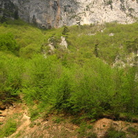 Jóreggelt Tara kanyon!
