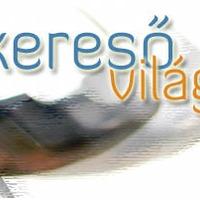A 10 legolvasottabb cikk a Kereső Világon 2010-ben