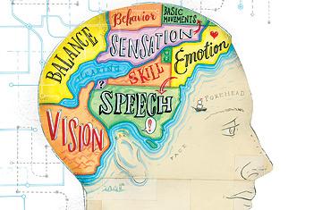 brain_map.jpg