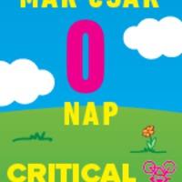Onlinemarketing ingyen: CriticalMass