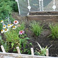 Néhány alapvető információ, amely nélkülözhetetlen a kerttervezéshez