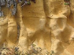 Kerti talajtípusok - agyagos talaj