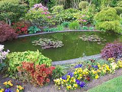 Egy kerti tó építése nem kis feladat