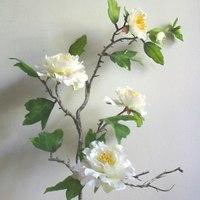 Művirágok tündöklése és bukása