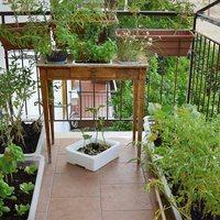 Öt tipp, hogy béke legyen a balkonkertekben!