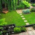 Zöldebb, mint a szomszéd kertje