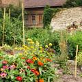 Közösségi kertek újratöltve!