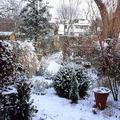 Télen is színes kertek!