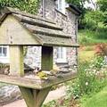 8 tipp madárbarát kertekhez