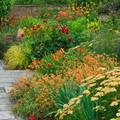 Hogyan legyen illatos kertünk?